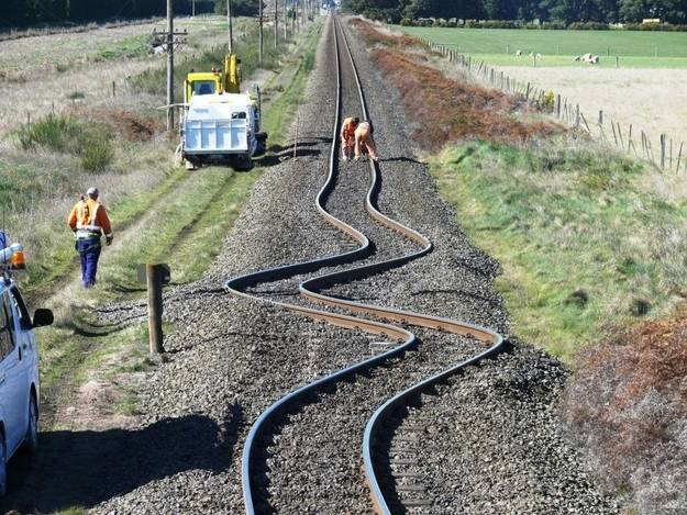 5.-This-New-Zealand-train-wont-be-taking-you-on-a-wild-ride