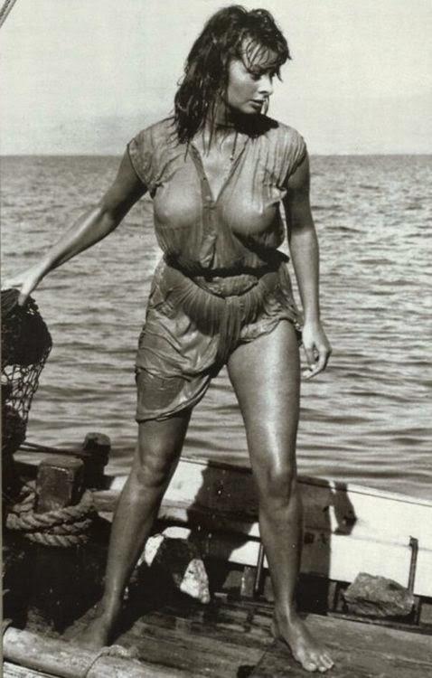 Celebrities 2 Sophia-Loren-1956.