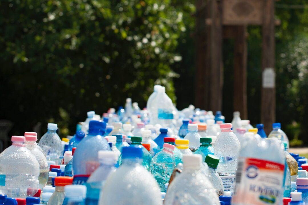 Cut Down On Waste