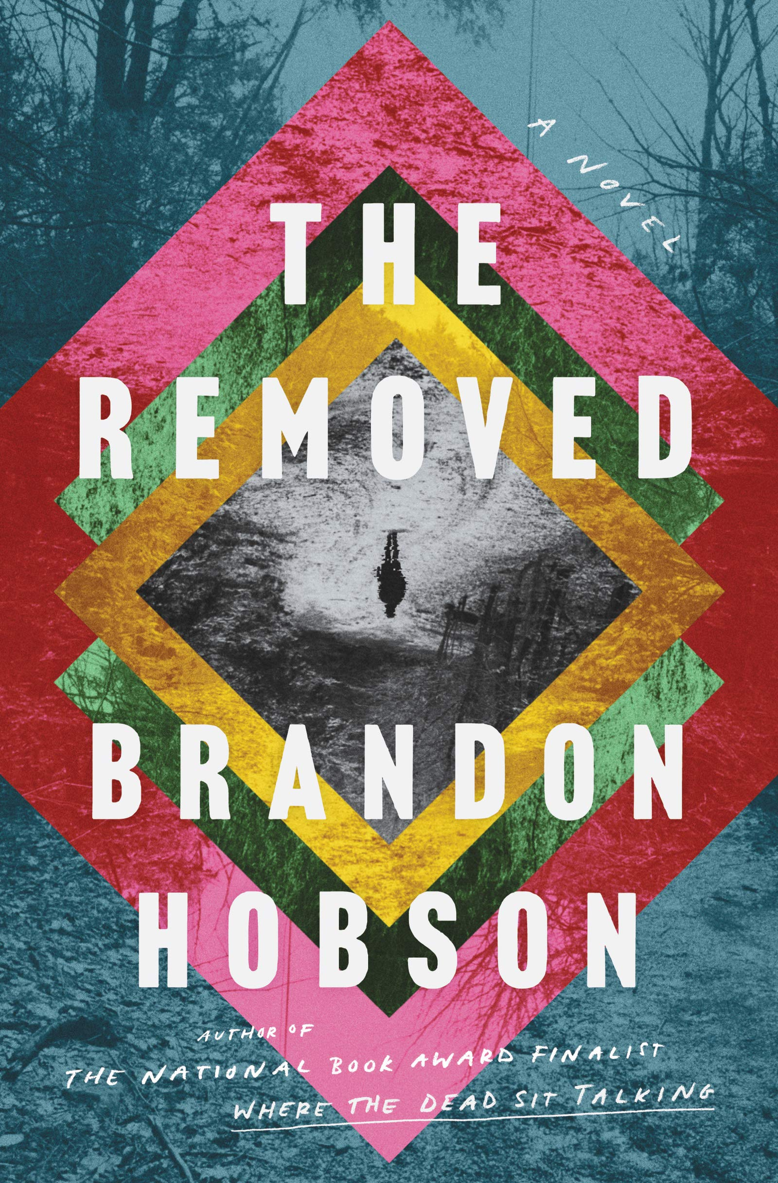 The Removed A Novel