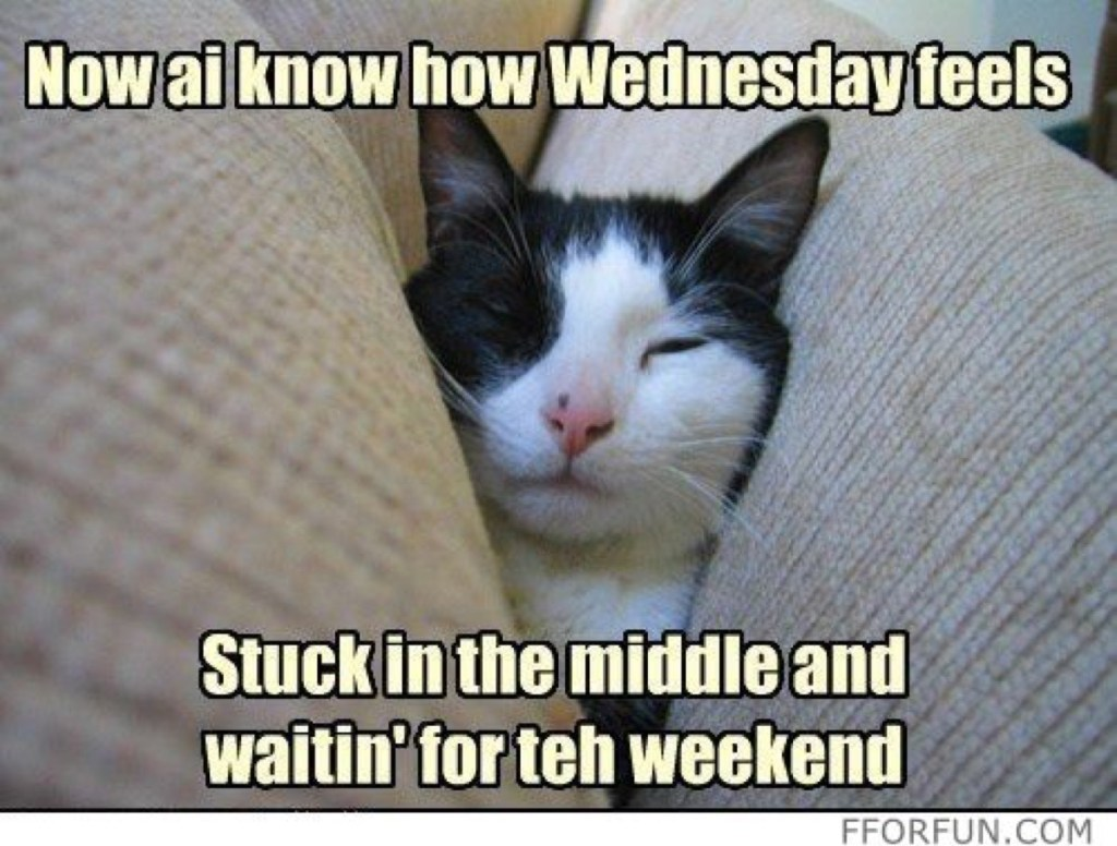 Wednesday Stuck in the middle